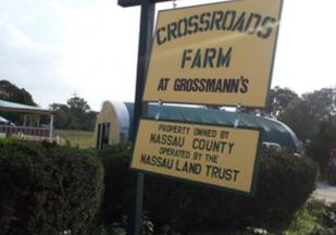 Crossroads Farm at Grossmans in Malverne